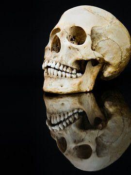 Mensenschedel met spiegel geisoleerd op zwarte achtergrond van