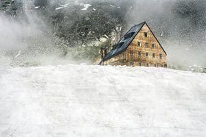house on the hill van anouk smit