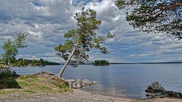 Norwegen, Fiskevollen. van