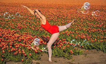Ballerina Bubble van Peter Heins
