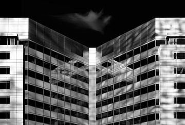 Reflecties von Greetje van Son