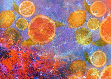 Sommernachtsraum von christine b-b müller
