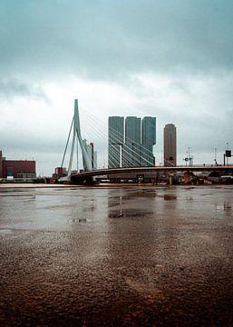 Erasmus-Brücke Rotterdam von Thijs van Beusekom