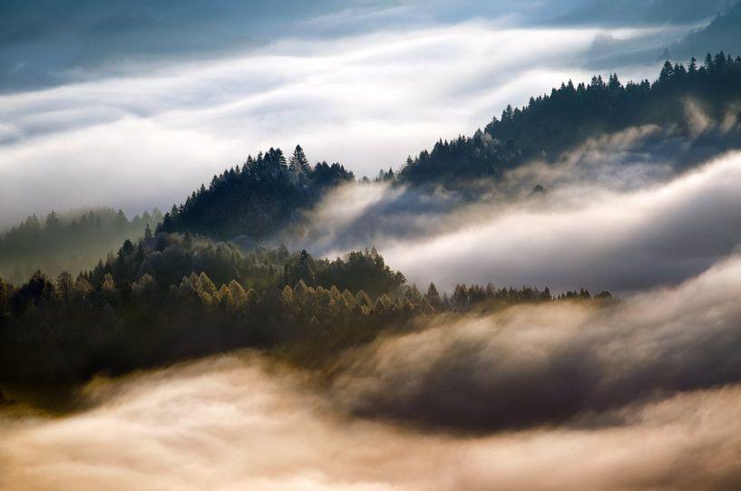Pieniny morning fog sur Wojciech Kruczynski