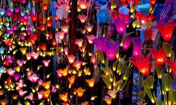 Lichtgevende bloemen van Floris den Ouden