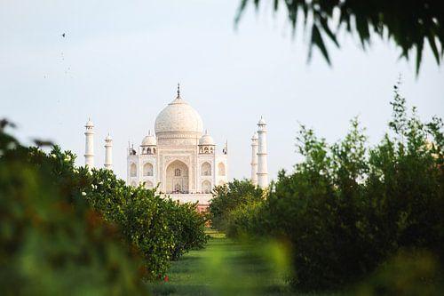 Taj Mahal van Yvette Baur