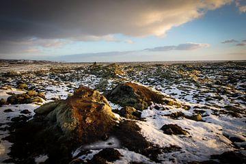 Vulkanisch landschap in IJsland van Marcel Alsemgeest