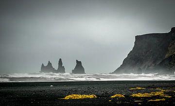 Vik zwart zand strand van Erik Keuker