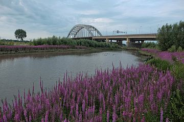 Leckagebrücke Vianen 2 von Maarten Kerkhof