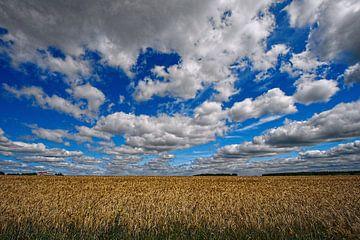 Wolkenlucht boven Pools korenveld van Yvonne Smits