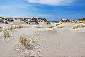 Duinlandschap op Noordzee-eiland Amrum