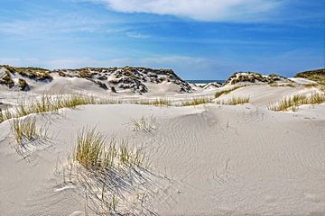 Duinlandschap op Noordzee-eiland Amrum van Frans Blok
