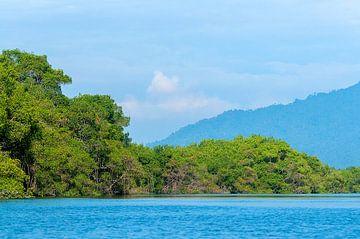 Ecuador: Churute Mangroves Ecological Reserve (Guayaquil) van Maarten Verhees