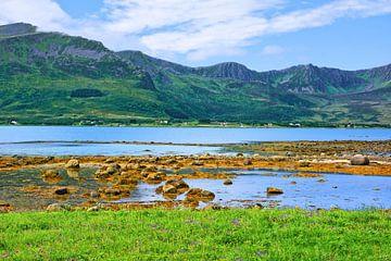 Blick über den Risøysundet auf Andøya von Gisela Scheffbuch