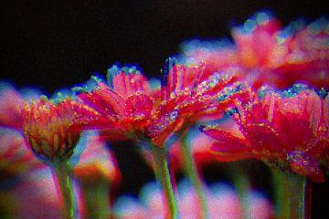 Blumenmosaik von Carla van Zomeren