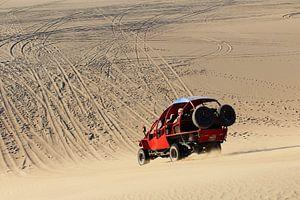 Buggy rijden in de woestijn van Berg Photostore