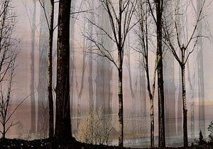 leeg bos van