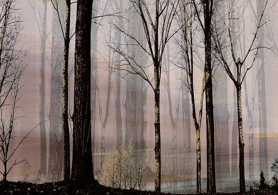 leeg bos van Henk Speksnijder