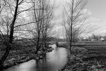 Zwart wit foto van de Limburgse Bleijenbeek van Patrick Verhoef