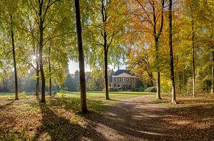 Boslaan in herfstkleuren, buitenplaats Land en Bosch, s-Graveland, , Noord-Holland, Nederland