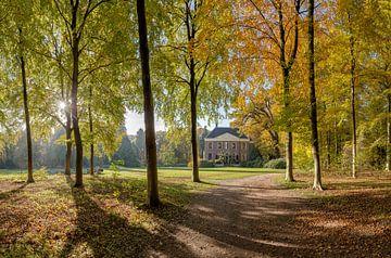 Boslaan in herfstkleuren, buitenplaats Land en Bosch, s-Graveland, , Noord-Holland, Nederland van