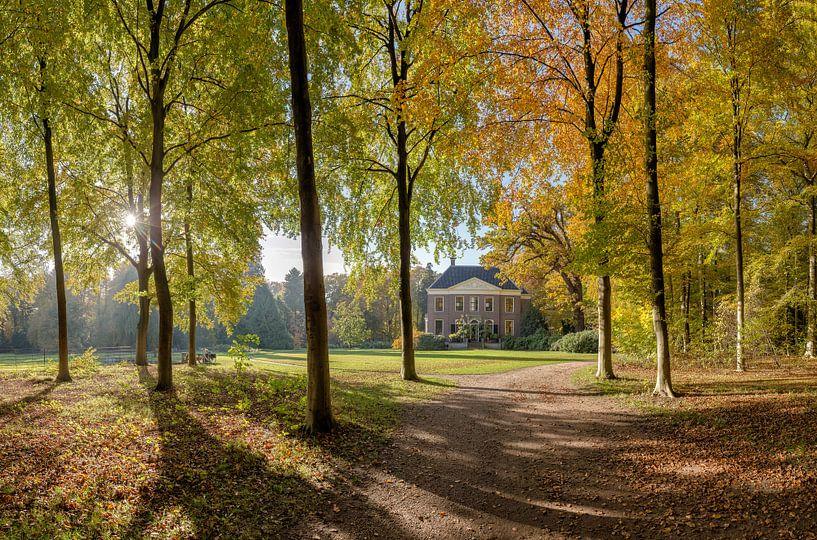 Boslaan in herfstkleuren, buitenplaats Land en Bosch, s-Graveland, , Noord-Holland, Nederland van Rene van der Meer