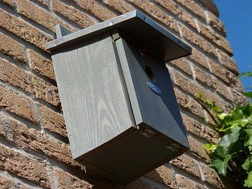 Vogelhuis in de achtertuin van Wilbert Van Veldhuizen