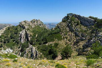 Groene uitgestrektheid en bergkam