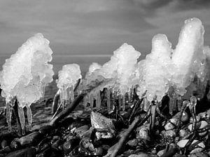 Eis am Stiel – Darß Weststrand im Winter 2018