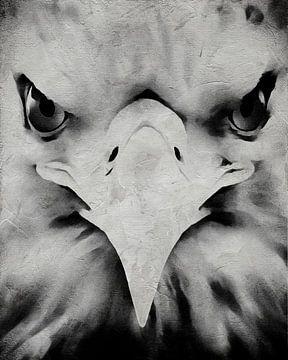 Porträt eines Adlers von Jan Keteleer