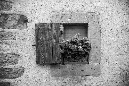 Fine art zwart wit foto van venster met luikje en bloemen in stenen-betonnen muur