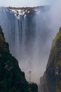 Victoria watervallen van Eddy Kuipers