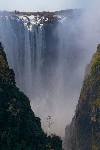 Victoria watervallen van
