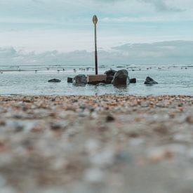 Strandmarker en rotsen van Jonai