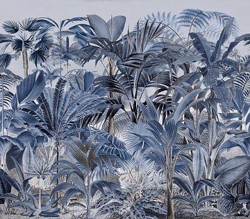 Im Tropenparadies von Andrea Haase