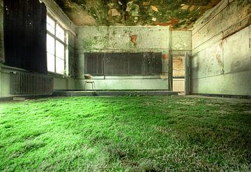 Grüner Teppich in einem samtenen Klassenzimmer von Olivier Van Cauwelaert