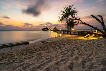Sonnenuntergang am Palmenstrand von Christian Klös