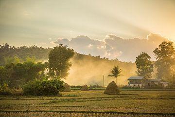 Rijstvelden in Hsipaw, Myanmar van Annemarie Arensen