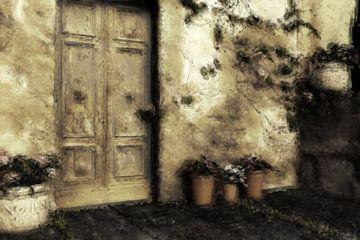 Doors van