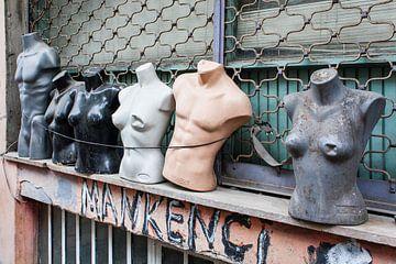 Istanbul torso's van