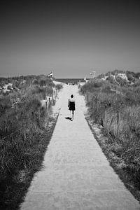Naar het strand sur erik driessen