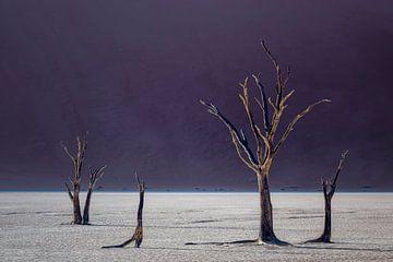 im Schatten der Düne von Peter Poppe