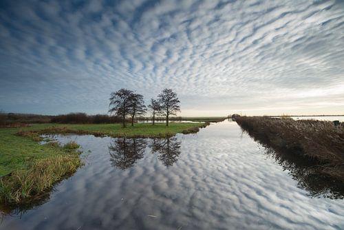 Reeuwijkse plassen von Herman van Heuvelen