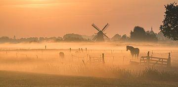 Noorddijk, Groningen, Netherlands van