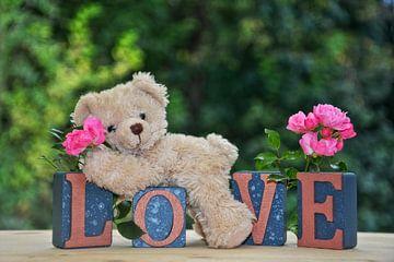 Teddy in de liefde van Claudia Evans