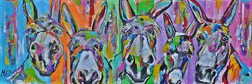 Kleurrijke ezels