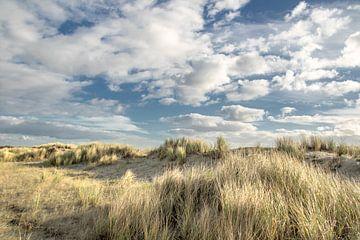 Duinen van Ouddorp aan zee van Irene Lommers