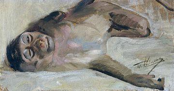 Makaak, WILHELM KUHNERT, Ca. 1905 van Atelier Liesjes