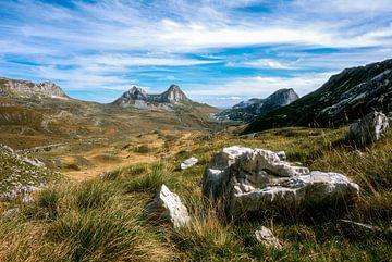 Saddle mountain, Montenegro van Hans Vellekoop