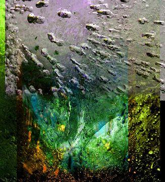 Splashes of Life van Rudi Lippi